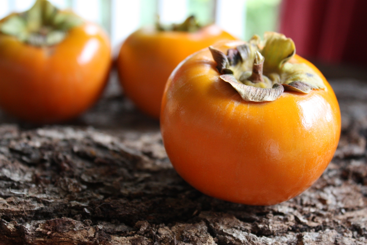 The Pleasure of Persimmons