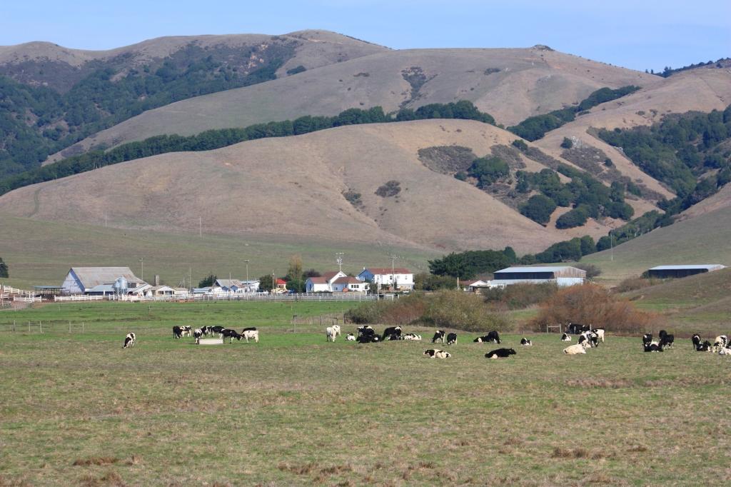 Lafranchi Ranch 2
