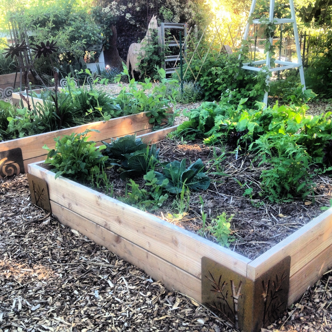 Garden Time-Saver: Quick Raised Beds with M Braces