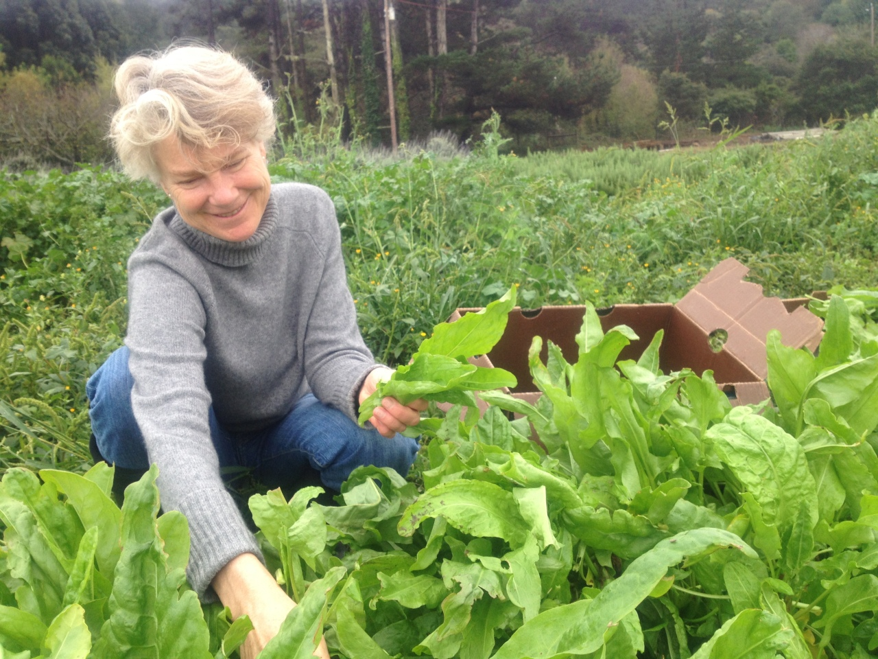 Gleaning for Good
