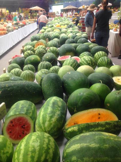 Heirloom Melons