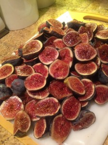 Fig pile of cut