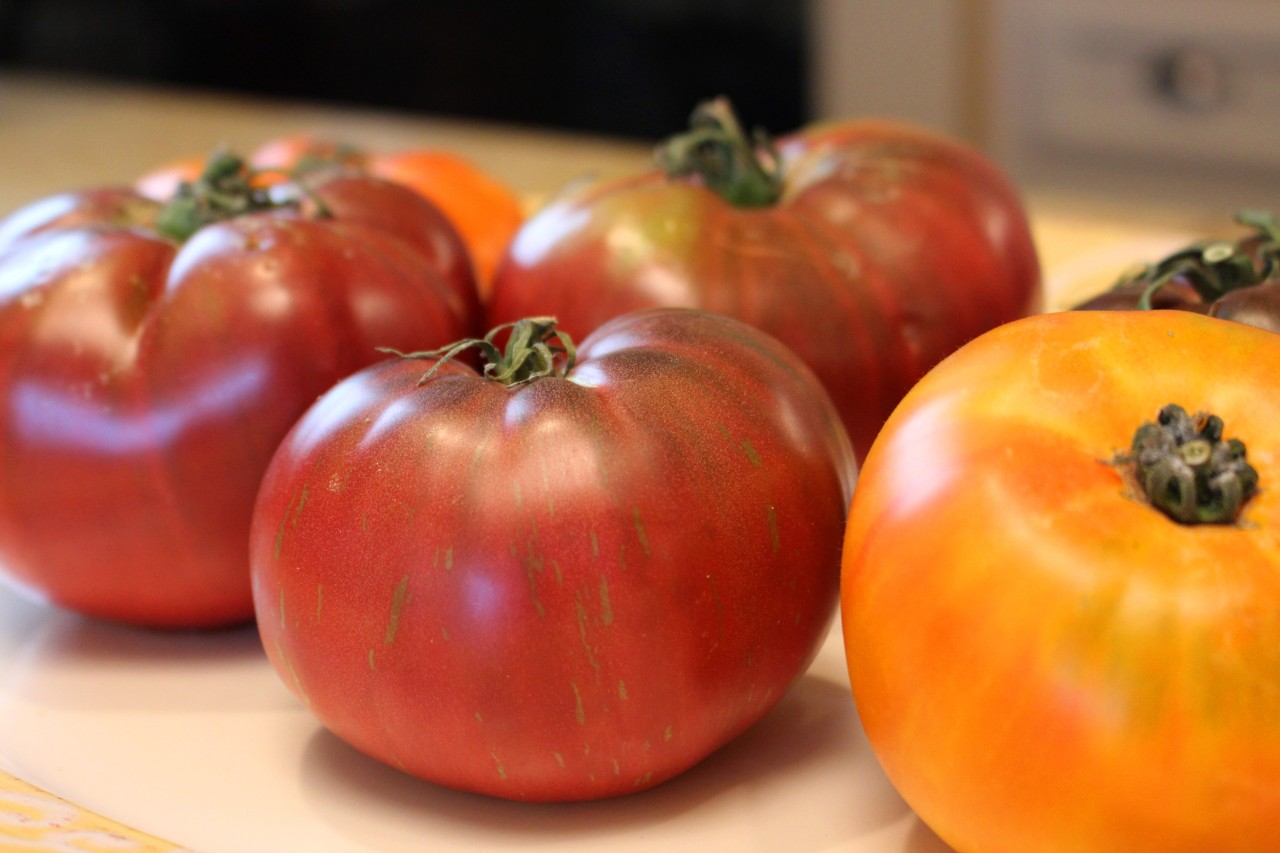 Confessions of a Tomato Whisperer