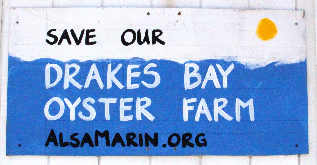 Farewell to Drakes Bay Oyster Company