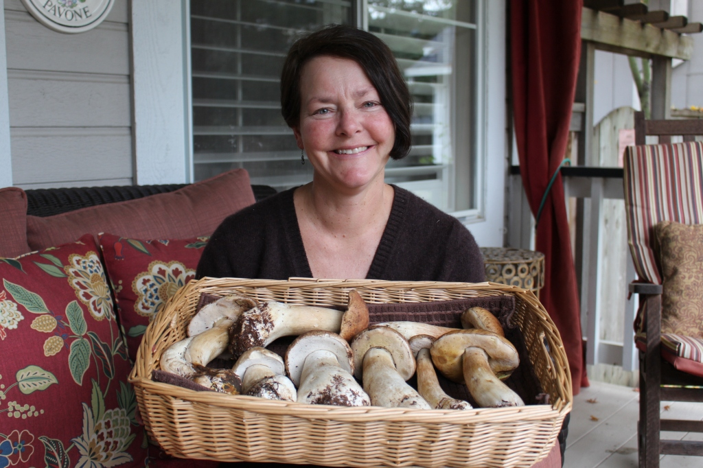 My 2014 porcini haul set the bar high!