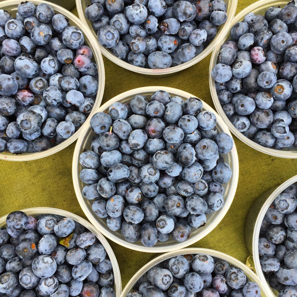 FFBlueberries