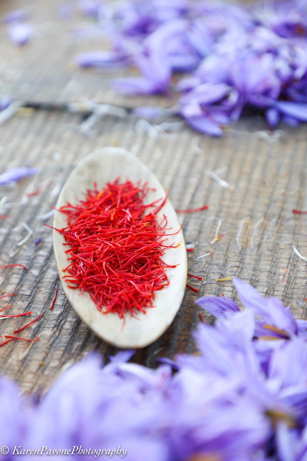 Precious Gold: Growing California Saffron at Peace & Plenty Farm